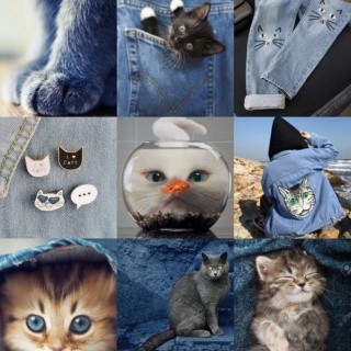 •Mood Grid Requests• Cat_de10