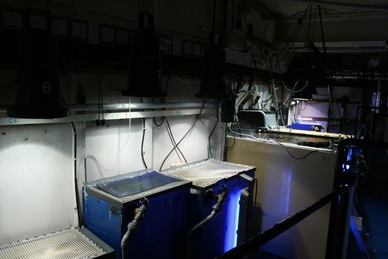 Aquarium de Monaco Amc310