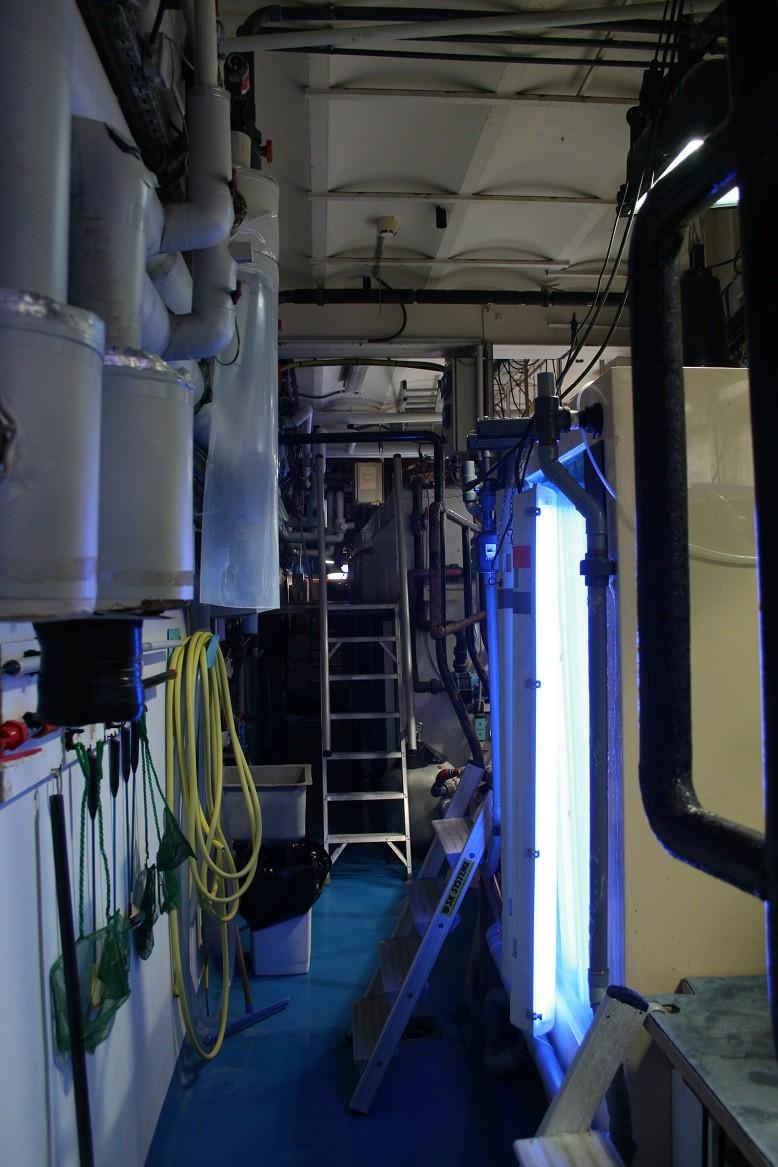 Aquarium de Monaco Amc410