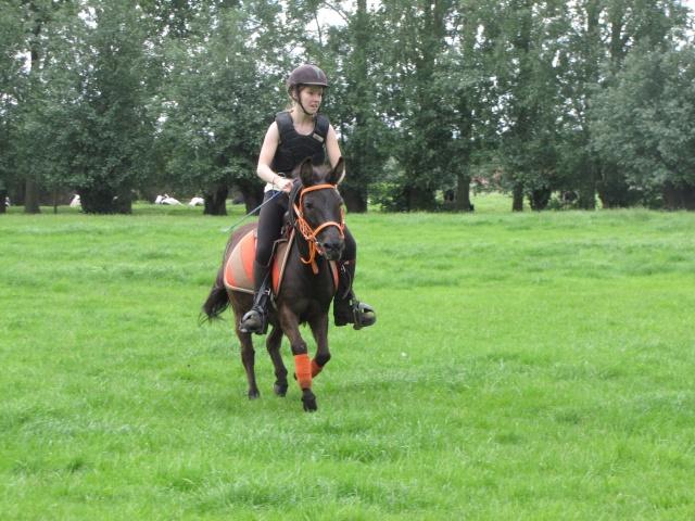 8 ans d'équitation..♥ Img_4212