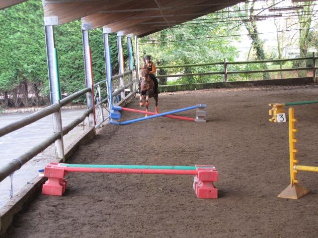 8 ans d'équitation..♥ Img_6211