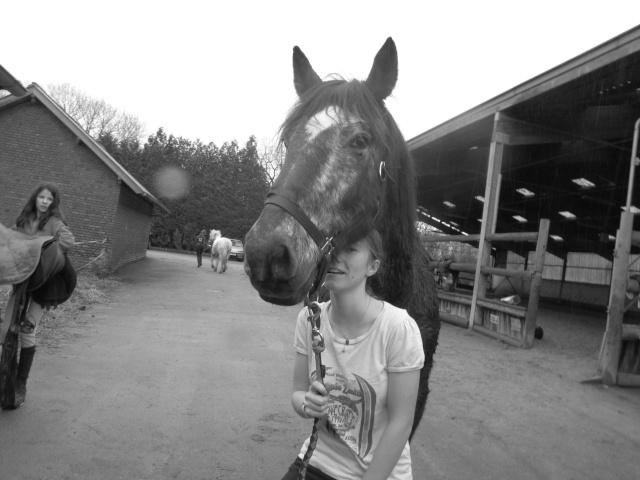 8 ans d'équitation..♥ - Page 2 Img_7510