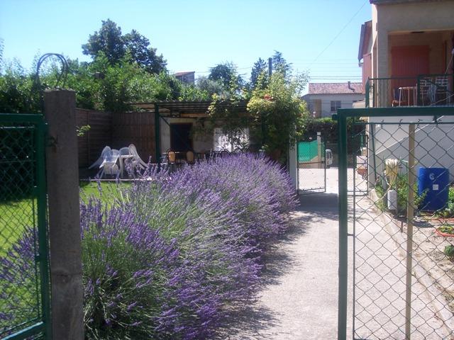 Vos vacances en Cévennes, Gite Le Romarin, 30350 Lézan (Gard) 100_9611