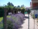 Vos vacances en Cévennes Gite la pivoine, 30350 Lézan (Gard) 100_9611