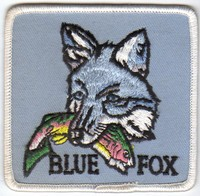 Annonces 2 badges brodés en tissu de marques Bluefo10