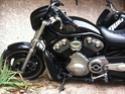 Mon copain motard du jour... - Page 3 Img_3215