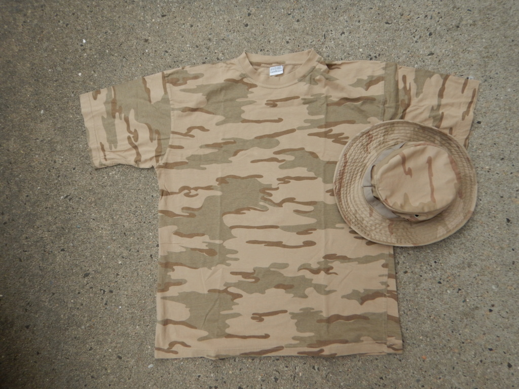 DESERT camouflage uniform - Page 2 Dscn9245