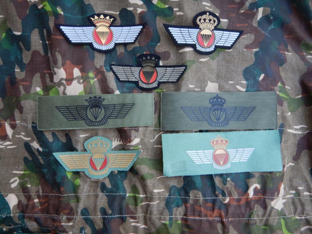 pre 1970 Spanish Para wings. Dscn9833