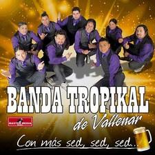 BANDA TROPIKAL DE VALLENAR 600x6010