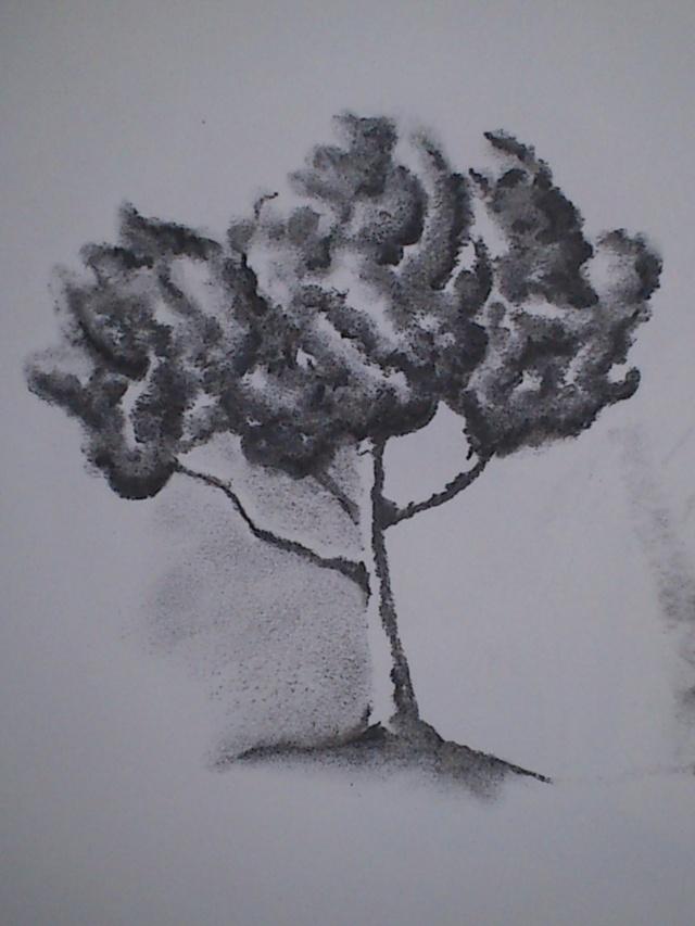Mes dessins Dsc_0111