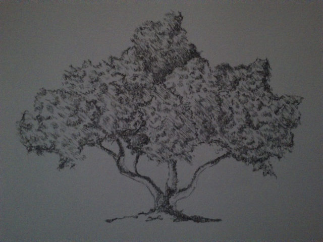 Mes dessins Dsc_0112