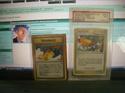 Zeigt her eure Pokemonkarten! Prollk10