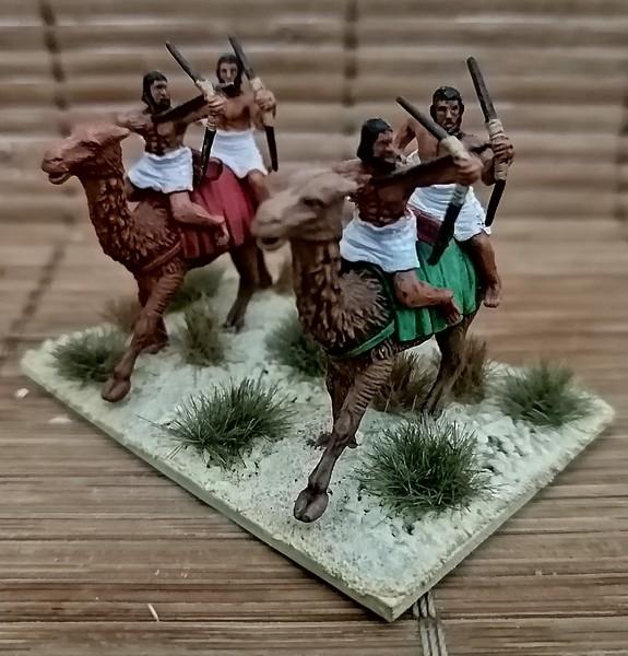 Armée Egyptienne et ses mercenaires 1/72 Img_2051