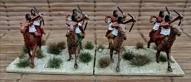 Armée Egyptienne et ses mercenaires 1/72 Img_2053