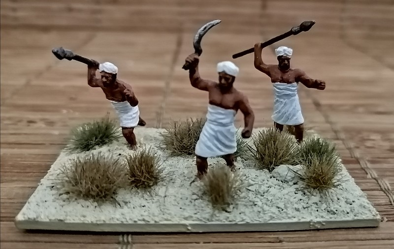 Armée Egyptienne et ses mercenaires 1/72 Img_2054