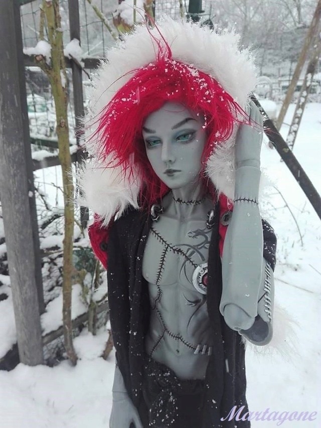 [coté SD] Premier pas dans la neige +*°*° D. K. *°*°  p*11 - Page 11 51010710