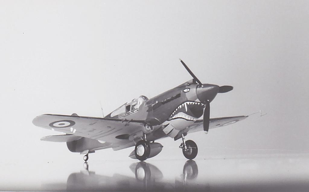 [Academy] - Curtiss P-40 Tomahawk Mk IIb Academ15