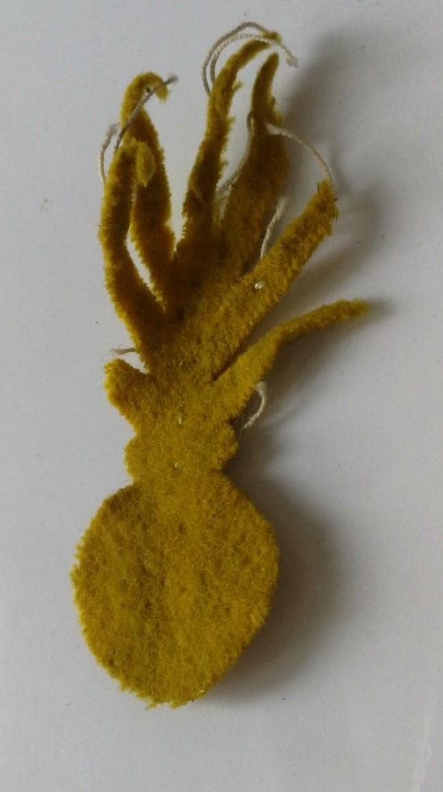 Devinette: c'est éphémère, jonquille et ça vire au jaune pisseux   J410