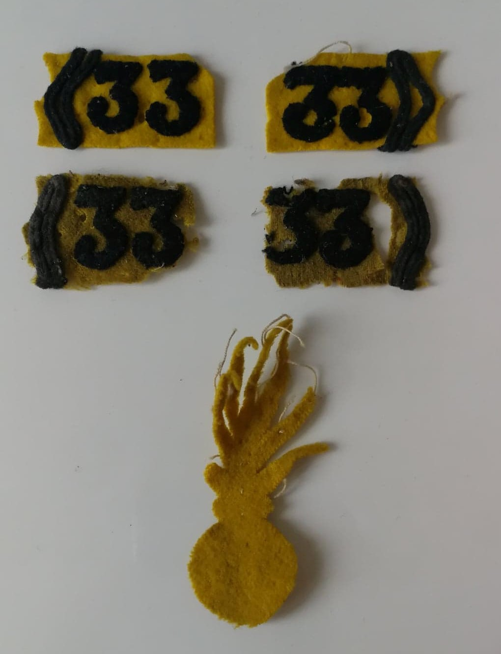 Devinette: c'est éphémère, jonquille et ça vire au jaune pisseux   J510