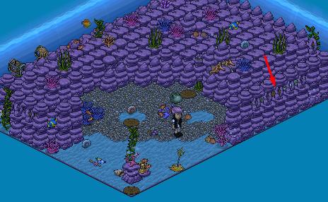 [ALL] Soluzione Gioco Coral: Immersione nelle Grotte #3 + 4/10 Screen22