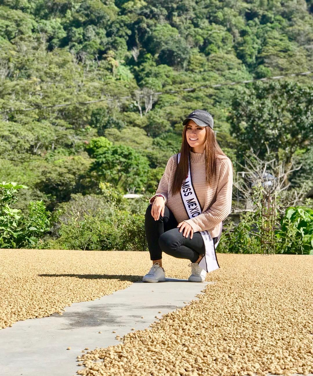 monica hernandez reynaga, mexico para reynado internacional cafe 2019. 46965410