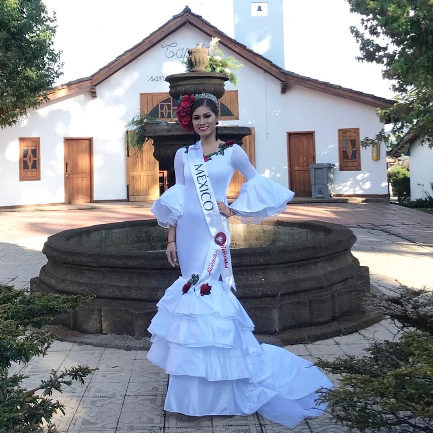 monica hernandez reynaga, mexico para reynado internacional cafe 2019. - Página 3 47692410