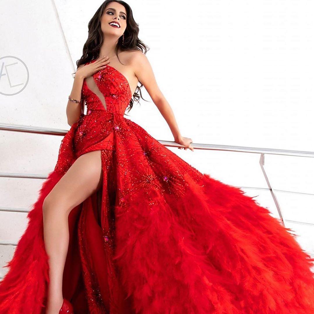regina peredo, reyna hispanoamericana 2019. 67611510
