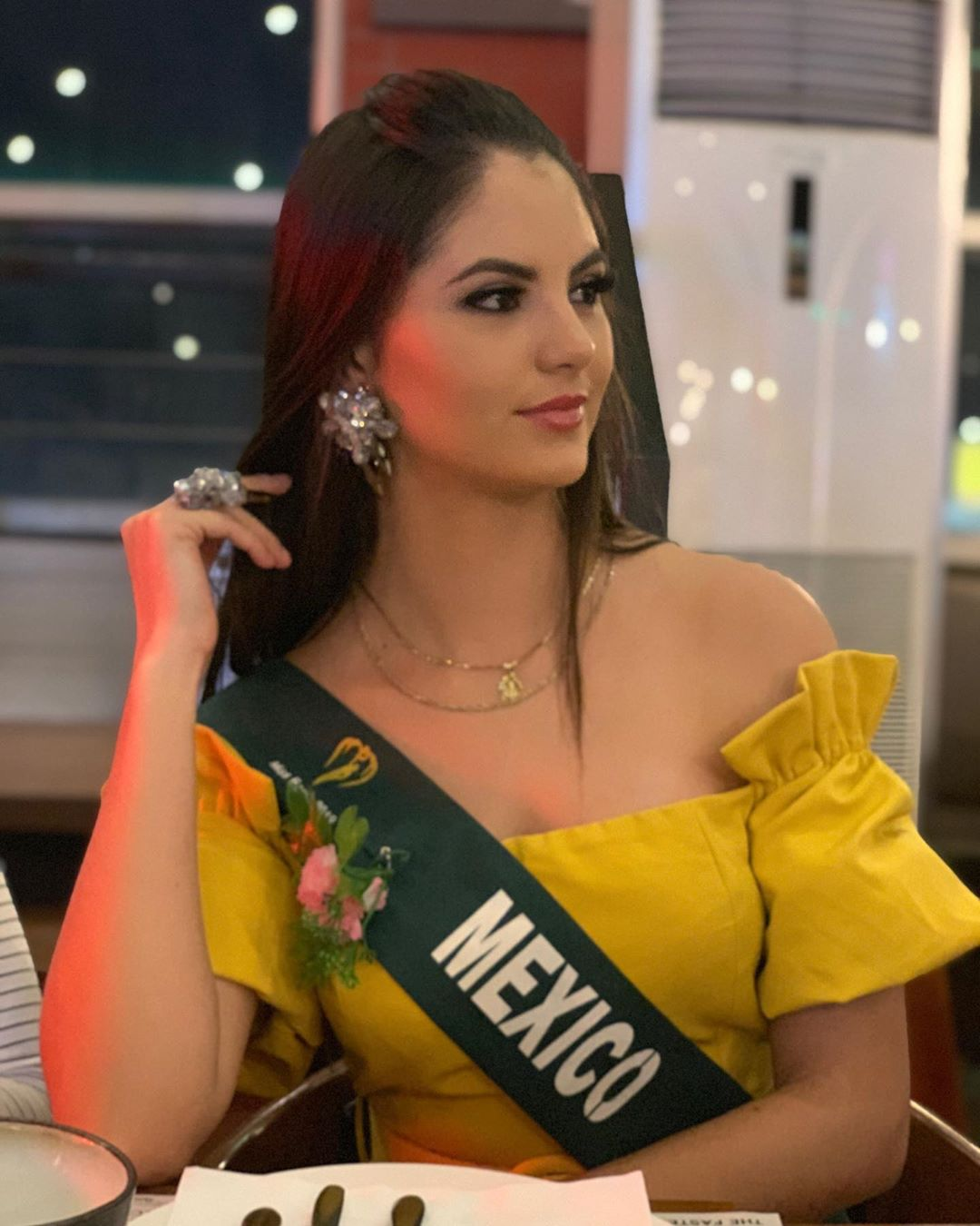hilary islas, miss earth mexico 2019. - Página 14 69969310
