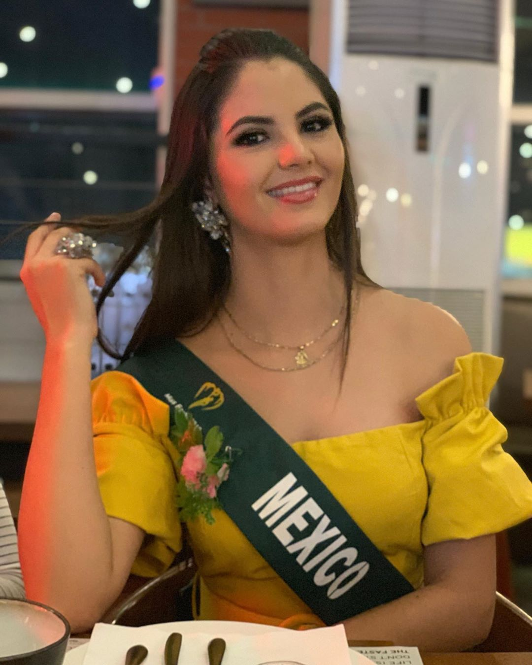hilary islas, miss earth mexico 2019. - Página 14 72746310