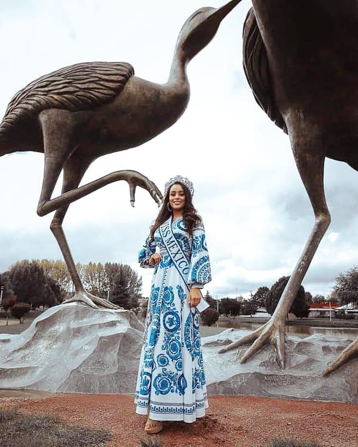 ashley alvidrez, top 12 de miss world 2019. - Página 4 75397713