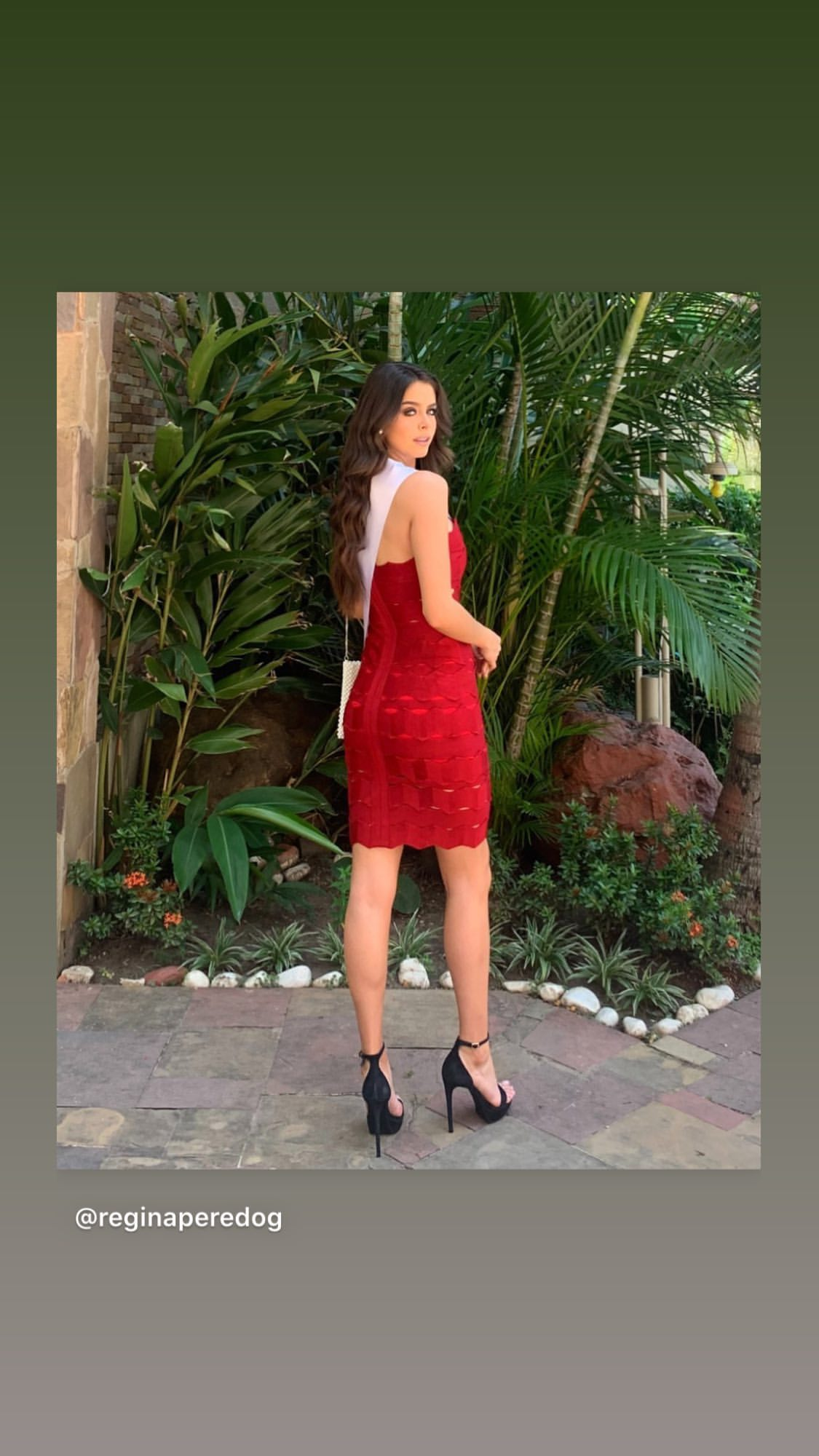 regina peredo, reyna hispanoamericana 2019. - Página 5 81768710