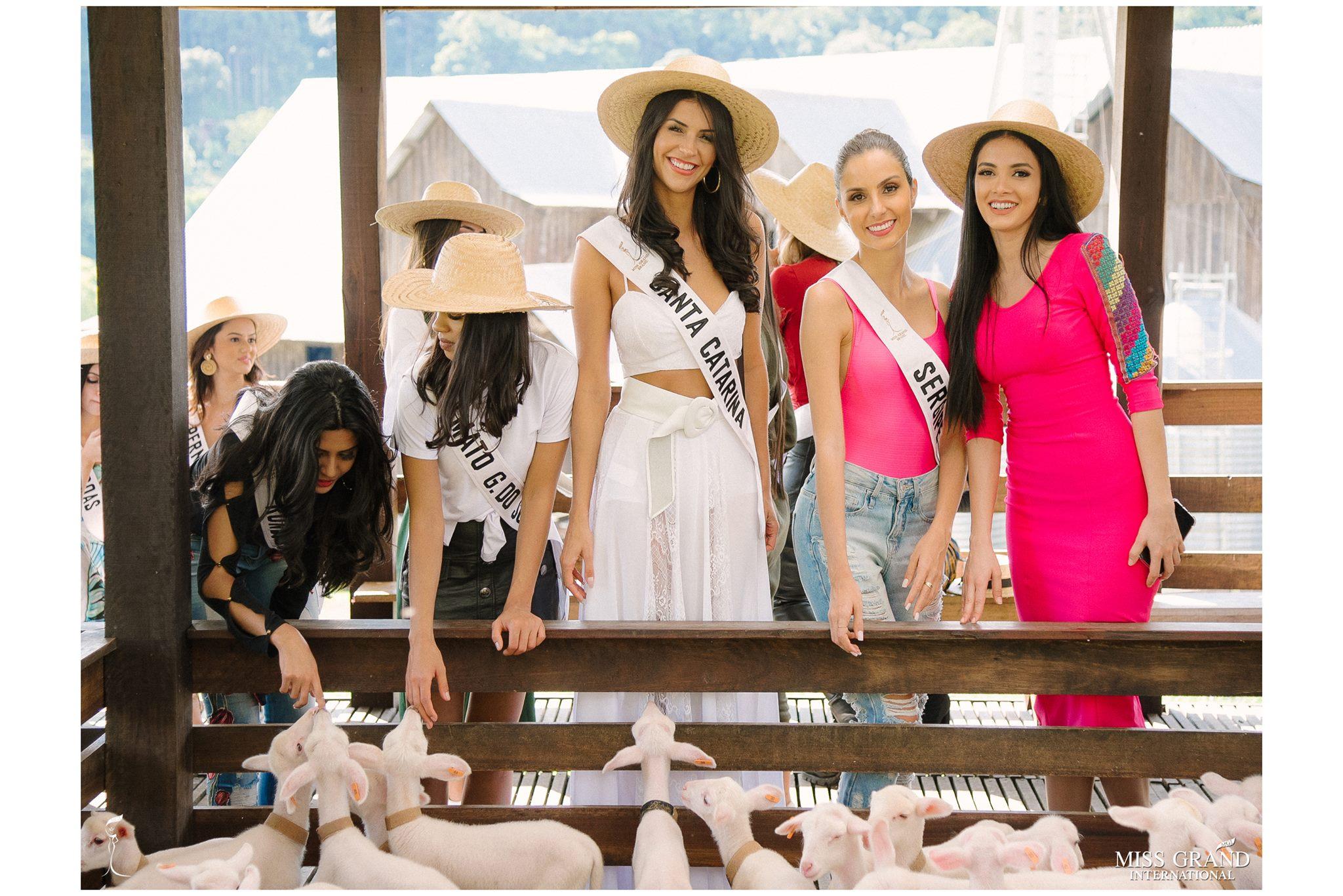 candidatas a miss grand brasil 2019. final: 28 feb. - Página 19 Alex-p74