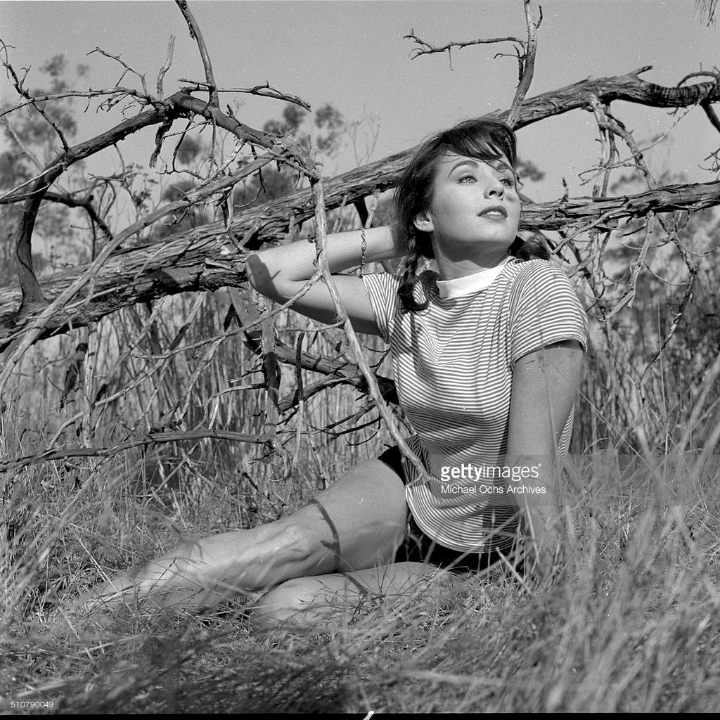 carol morris, miss universe 1956. Cm3910