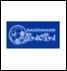 Liga Sacyr ASOBAL. Jornada 9. Logo-s12