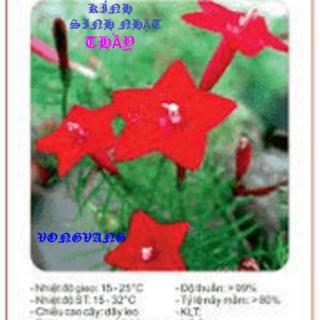 trang thơ Đường Luật VMH - Page 8 9_256_10