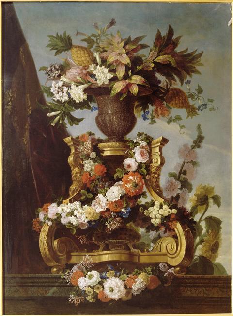 ananas - L'ananas, le fruit roi 92-00410