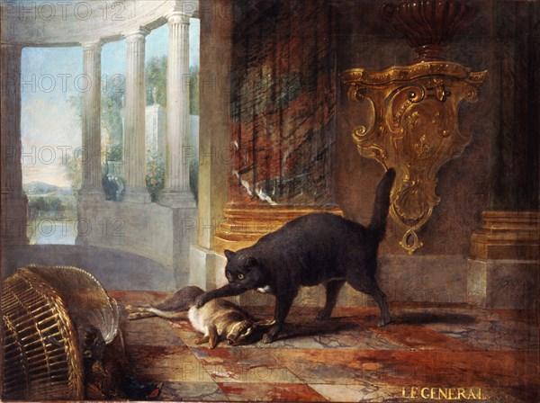 animaux - Exposition Les animaux du roi à Versailles Bth07310