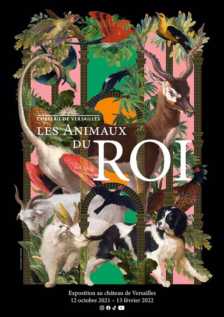 animaux - Exposition Les animaux du roi à Versailles Fasw3_10