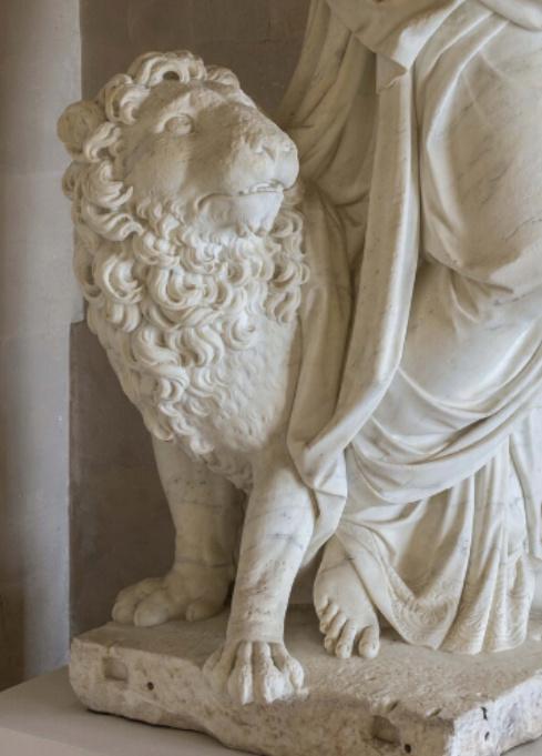 animaux - Exposition Les animaux du roi à Versailles Scree444