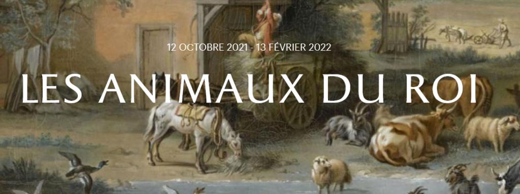 animaux - Exposition Les animaux du roi à Versailles Scree512