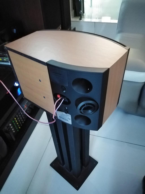 Bose 301 IV Speaker. .  Img_2028