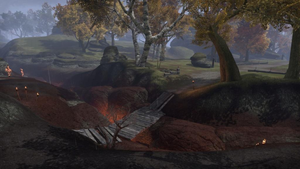 La Grande forêt 20180406