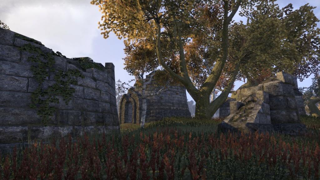 [Screenshots] Terres intérieures (sauf Cité Impériale) 20181311