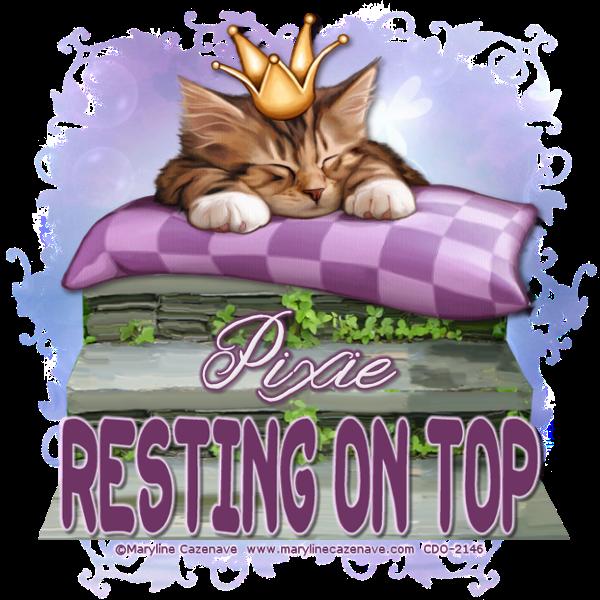 On Top Restin10