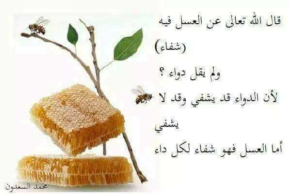 العسل شفاء لكل داء  4810