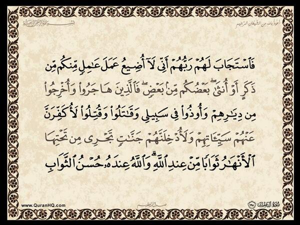 الآية 195 من سورة آل عمران الكريمة المباركة Aeoo_103
