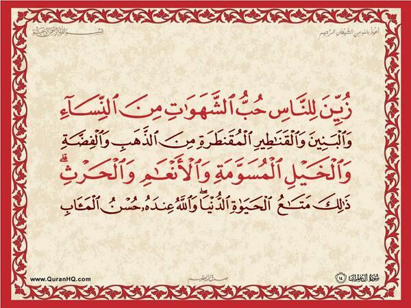الآية 14 من سورة آل عمران الكريمة المباركة Aeoo_114