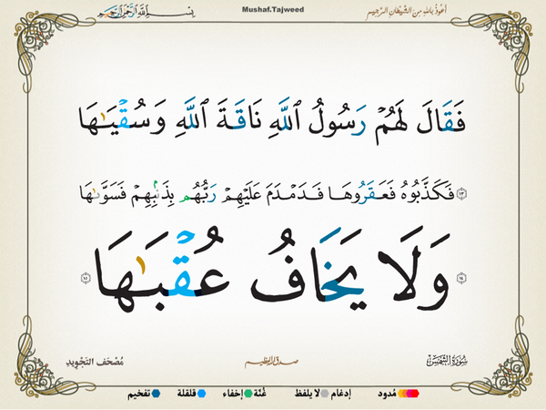 الآيات 13 ـ 15 من سورة الشمس الكريمة المباركة Aeoo_116