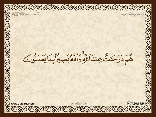 الآية 163 من سورة آل عمران الكريمة المباركة Aeoo_171