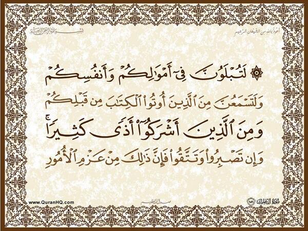 الآية 186 من سورة آل عمران الكريمة المباركة Aeoo_194